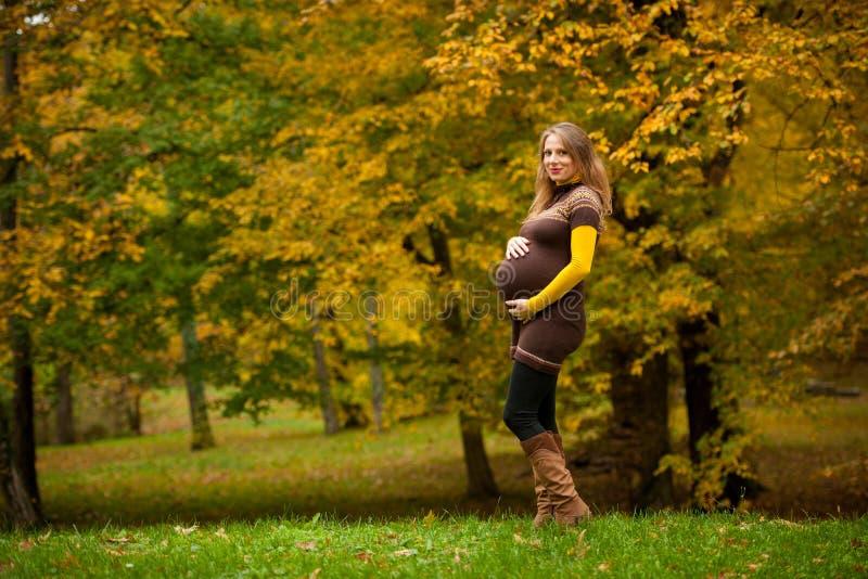 Mulher gravida bonita exterior no parque na sagacidade da tarde do outono fotografia de stock
