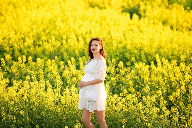 Mulher gravida bonita nova da morena grávida bonita que toca em sua barriga com o amor e o cuidado, fazendo uma forma do coração imagem de stock royalty free