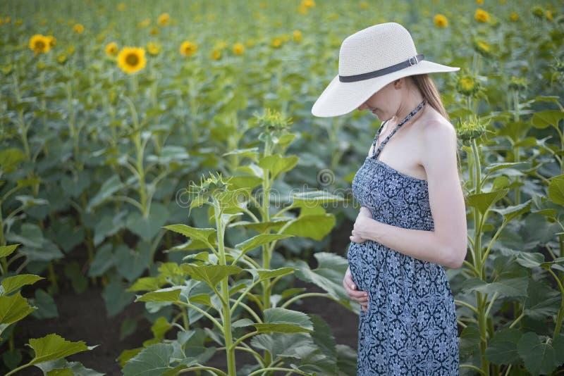 A mulher gravida bonita nova está em um chapéu e em um vestido no campo de girassóis de florescência foto de stock royalty free