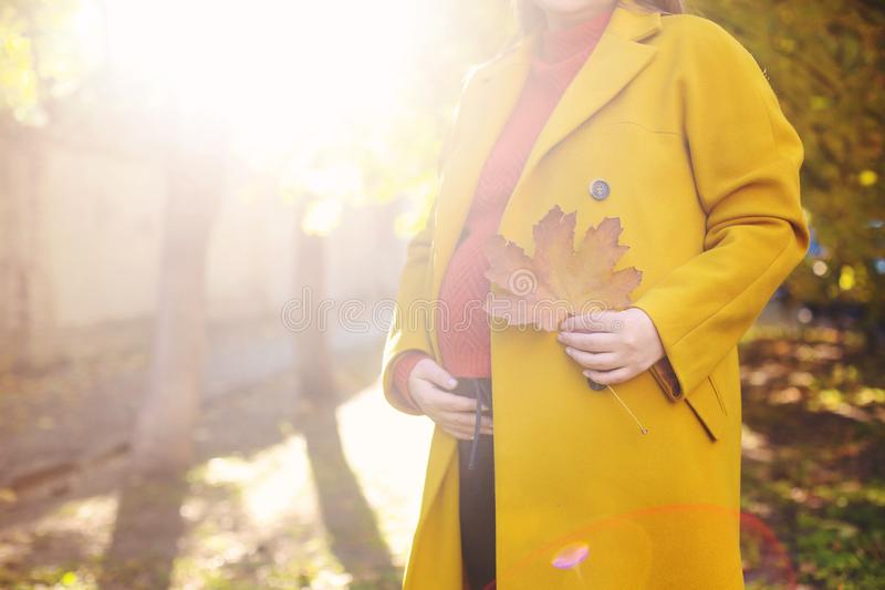 Mulher gravida bonita nova no parque do outono fotos de stock