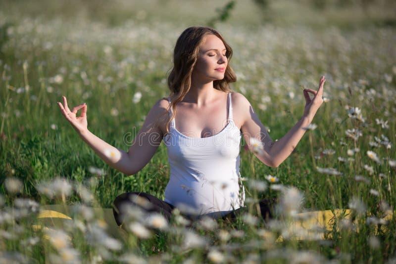 Mulher gravida bonita que faz a ioga no campo da camomila foto de stock royalty free