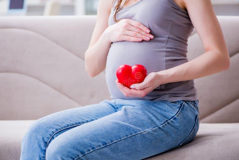 A mulher gravida com uma barriga da barriga que senta-se em um sofá em casa imagem de stock royalty free