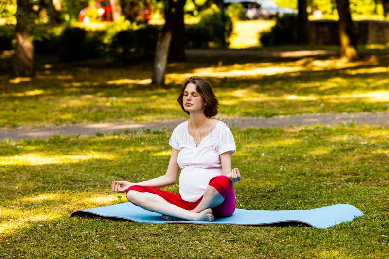 Mulher gravida fora na natureza que faz a ioga fotografia de stock royalty free