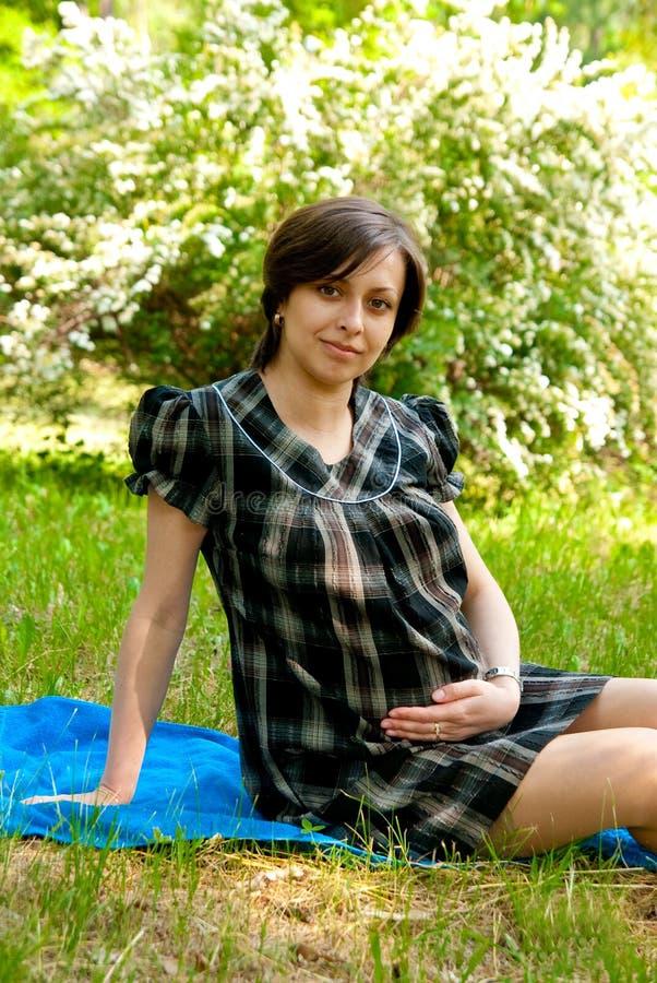Mulher gravida na grama fotografia de stock