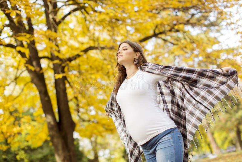 Mulher gravida no parque do outono fotografia de stock
