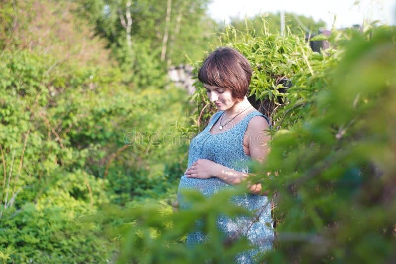 A mulher gravida no pomar de ma?? est? guardando a barriga e o ramo de floresc?ncia da ma?? fotografia de stock royalty free