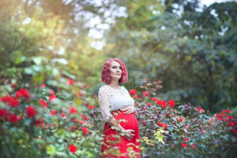 Mulher gravida nova bonita que anda no campo das rosas fotografia de stock