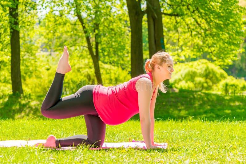 Mulher gravida nova que faz a aptidão em um parque imagem de stock royalty free