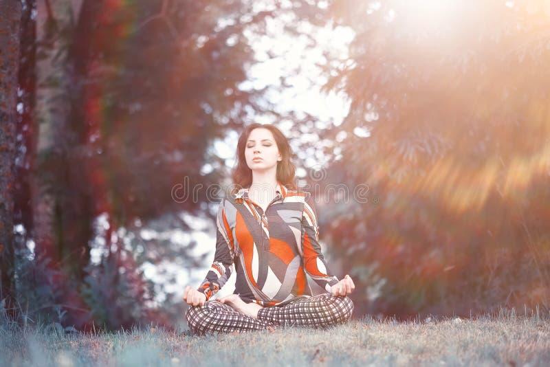 Mulher gravida que faz o exercício da ioga na natureza fotos de stock