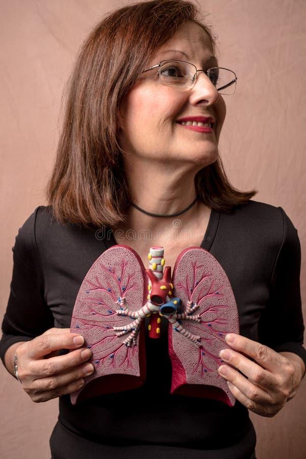 A mulher guarda o modelo médico dos pulmões humanos fotografia de stock royalty free