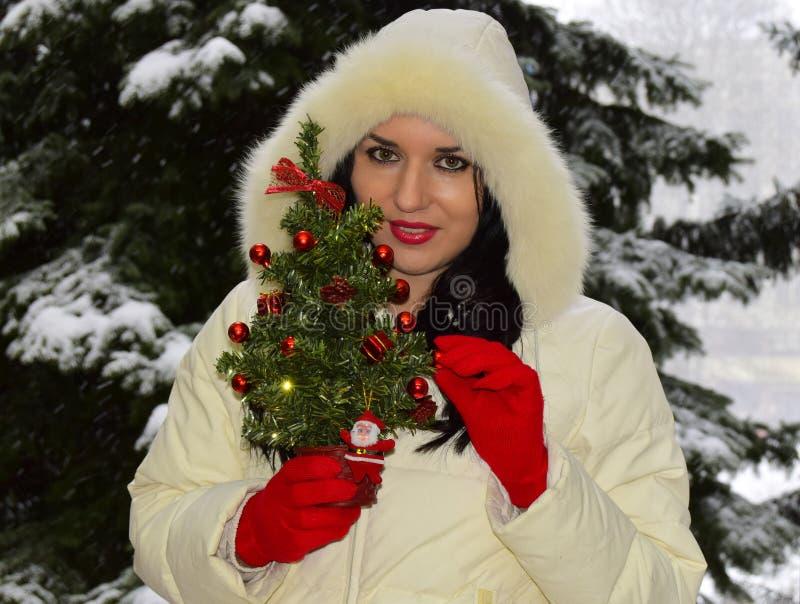 A mulher guarda um abeto de ano novo à disposição fotografia de stock