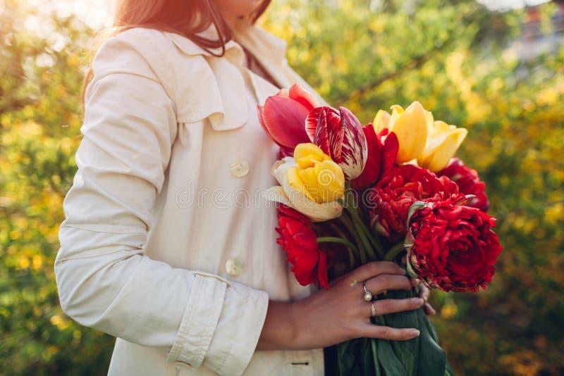 A mulher guarda um ramalhete de tulipas coloridas Presente para o dia do ` s da m?e foto de stock royalty free