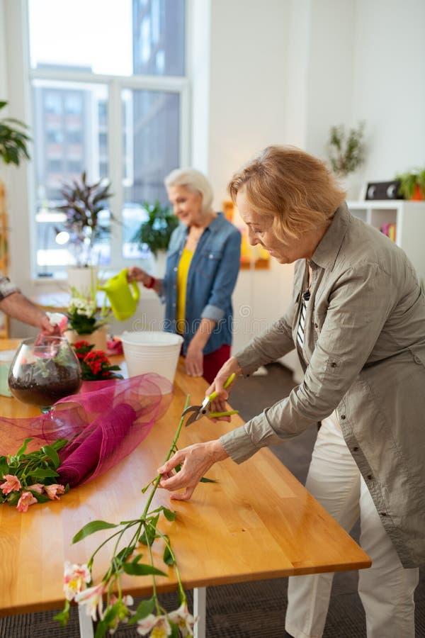 Mulher idosa agradável que corta um ramo da flor fotografia de stock royalty free