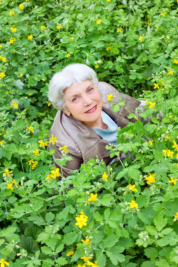 Mulher idosa bonita feliz que senta-se em uma clareira fotos de stock royalty free