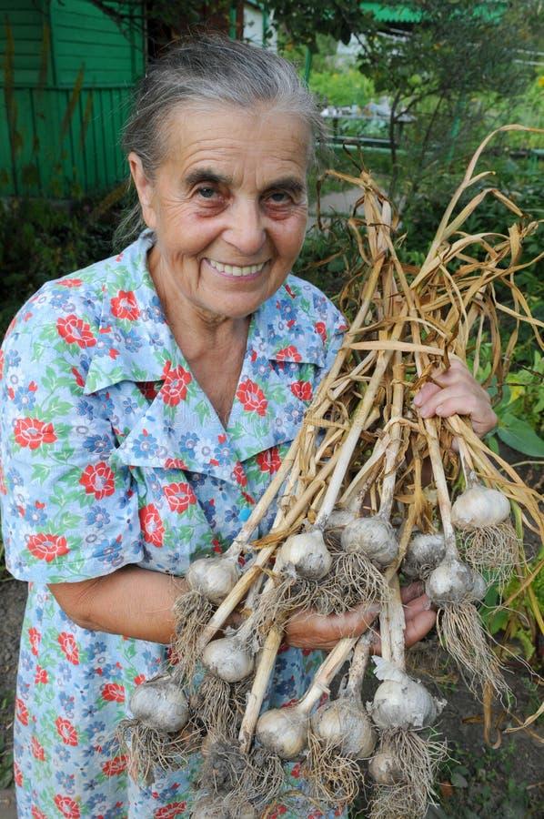 Mulher idosa em uma horta. imagens de stock