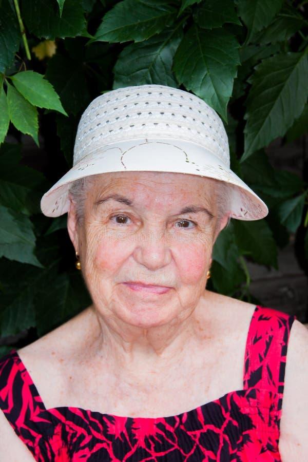 A mulher idosa na natureza imagem de stock