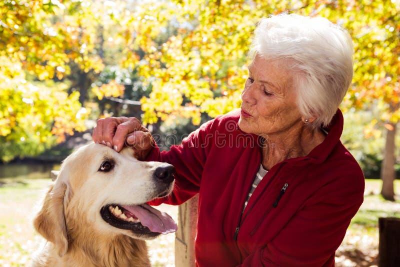 mulher idosa que senta-se com cão foto de stock royalty free