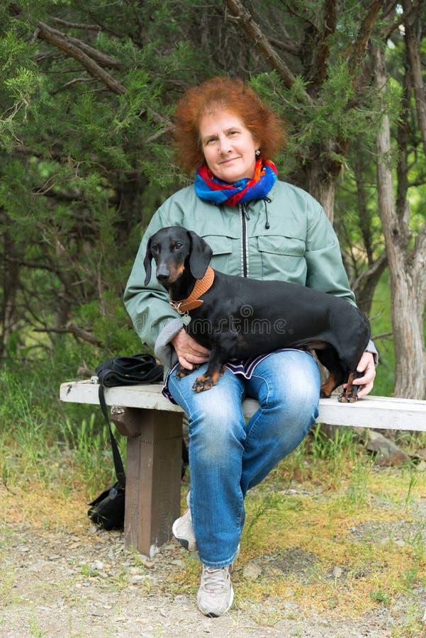 A mulher idosa senta-se no banco no bosque do zimbro com bassê fotografia de stock