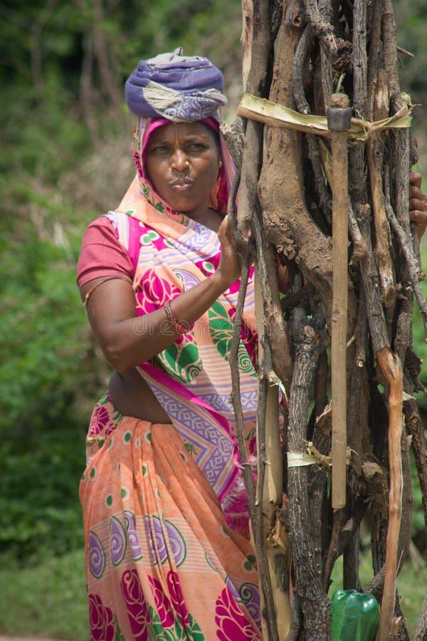 Mulher indiana que recolhe a madeira fotos de stock royalty free