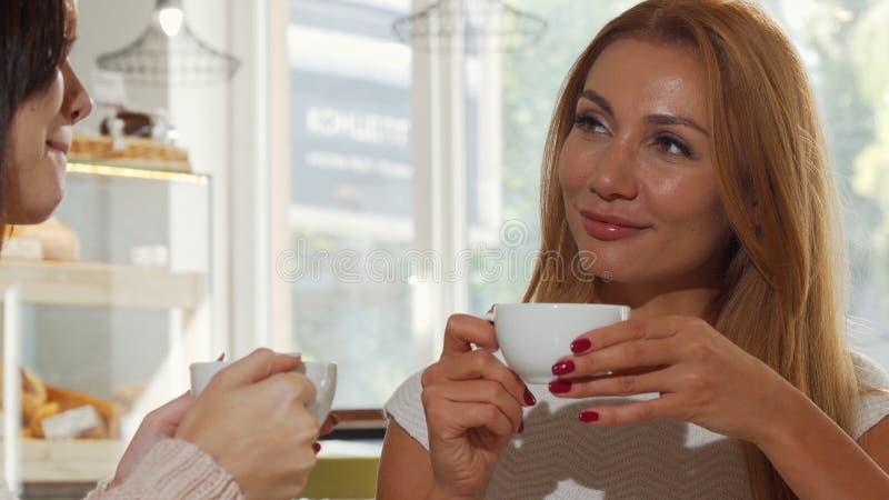 Mulher lindo que aprecia o café delicioso, ao conversar com seu melhor amigo fotos de stock royalty free