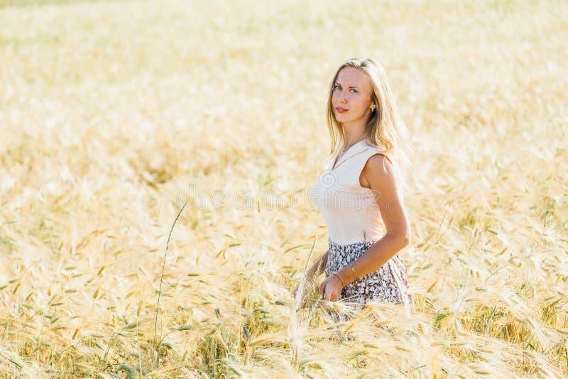 Mulher loura bonita em um campo dourado do ver?o fotos de stock