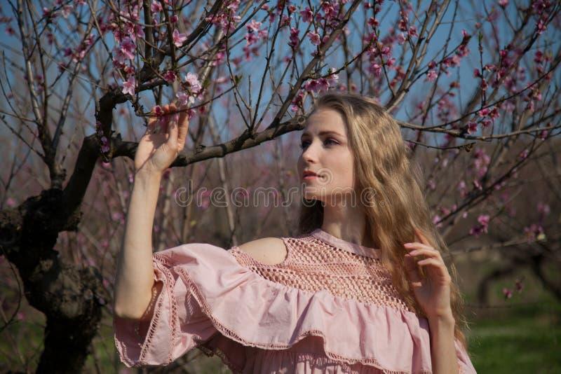 Mulher loura bonita em um jardim de rosas florescido imagem de stock royalty free