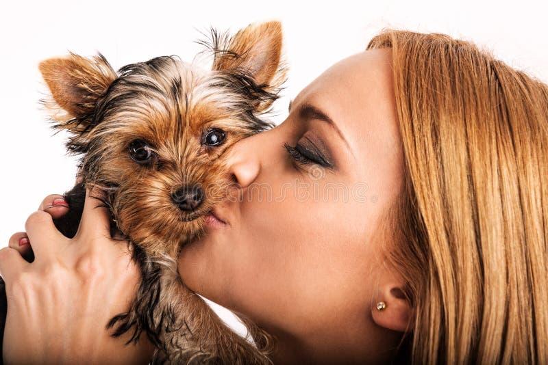 Mulher loura bonita que beija o yorkshire terrier - ascendente próximo fotos de stock