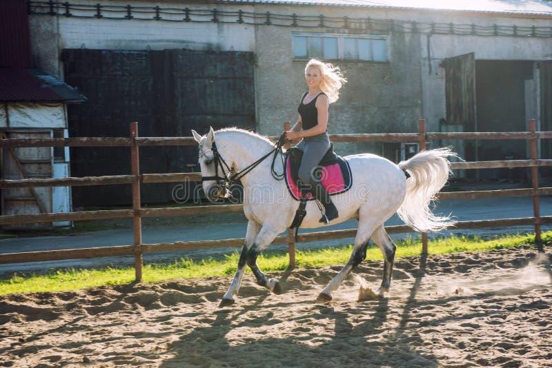 Mulher loura bonita que monta um cavalo fotografia de stock