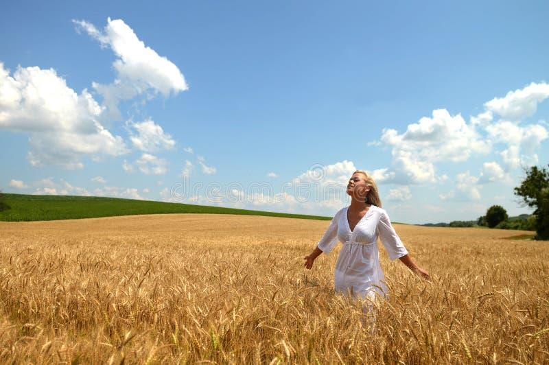 Mulher loura no campo de trigo fotografia de stock