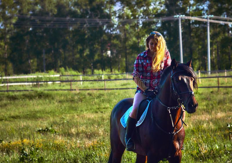 A mulher loura nova em uma camisa de manta toma uma caminhada com seu cavalo imagem de stock royalty free