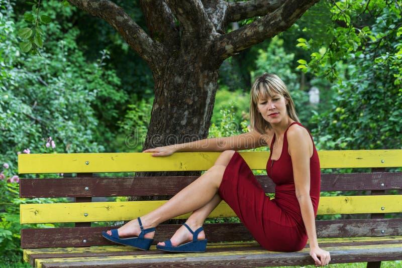 A mulher loura nova em uma inclinação vermelha do vestido senta-se em um banco de madeira imagens de stock royalty free