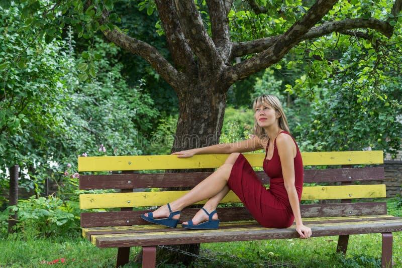 A mulher loura nova em uma inclinação vermelha do vestido senta-se em um banco de madeira imagens de stock