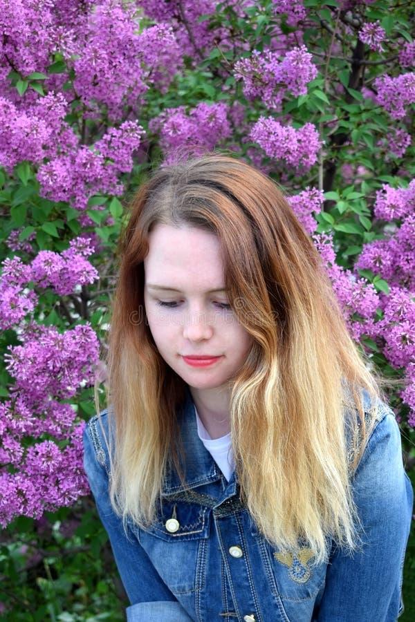 Mulher loura nova pelo arbusto do lilás foto de stock royalty free