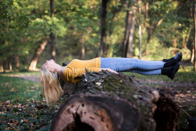 Mulher loura nova que coloca em um ramo de árvore na floresta foto de stock royalty free