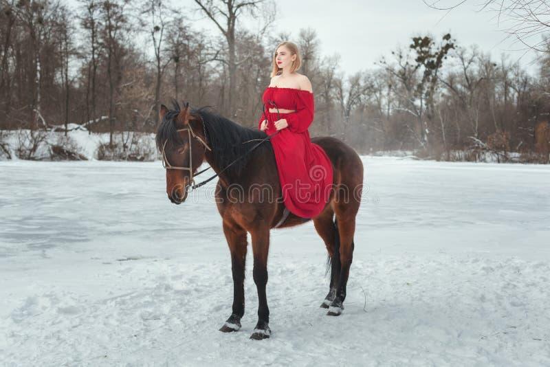 Mulher loura nova que monta um cavalo foto de stock