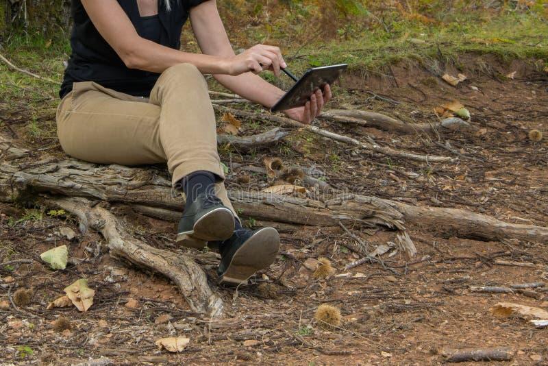 A mulher loura nova que senta-se na árvore enraíza no parque/madeiras usando a tabuleta digital fotos de stock