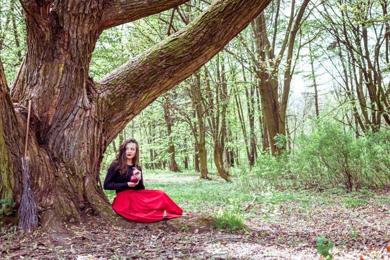 Mulher místico da bruxa fotos de stock royalty free