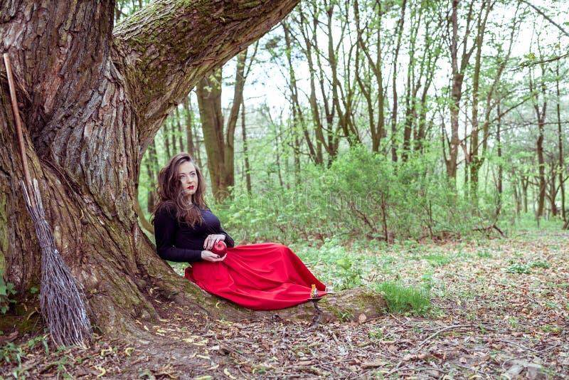 Mulher místico da bruxa foto de stock royalty free