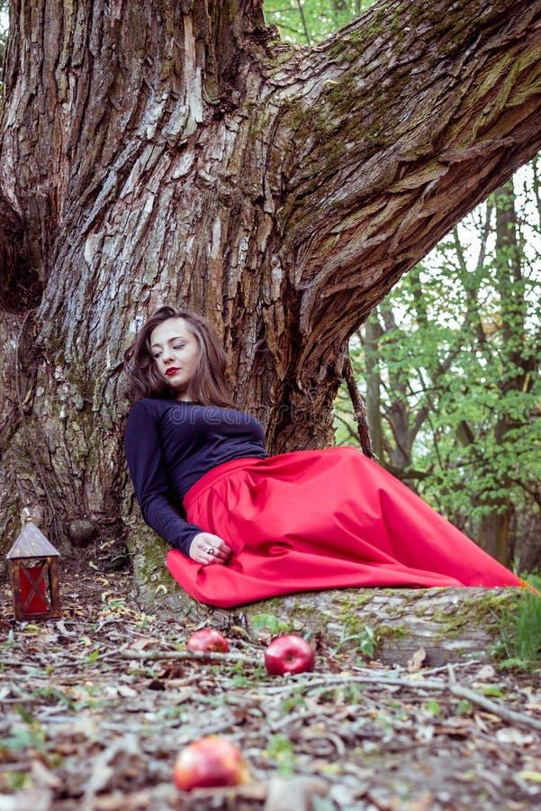 Mulher místico da bruxa imagens de stock