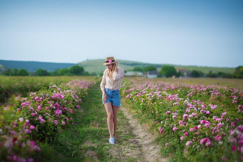 Mulher macia nova bonita que anda no campo das rosas de chá As calças de brim vestindo da senhora loura e o chapéu retro apreciam imagens de stock royalty free