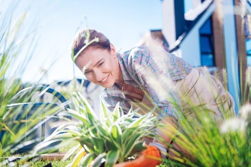 Mulher madura atraente que veste flores de transplantação do pendente agradável foto de stock royalty free