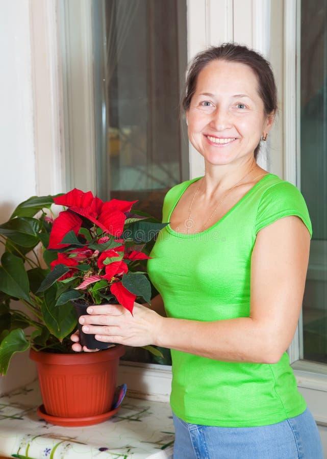 Mulher madura com flores do Poinsettia imagens de stock royalty free