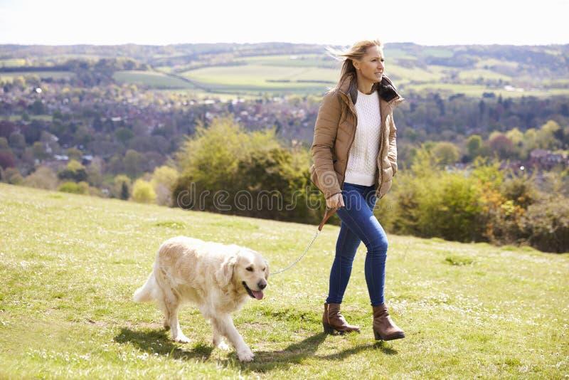 Mulher madura que toma o golden retriever para a caminhada no campo fotografia de stock royalty free