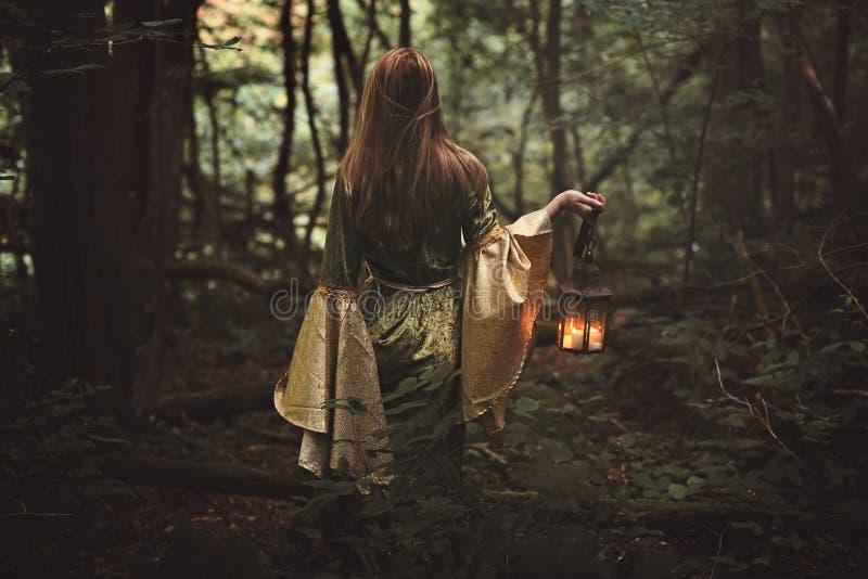 Mulher misteriosa na floresta feericamente fotos de stock