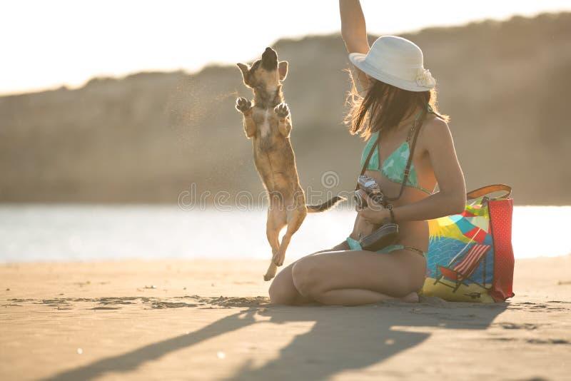 Mulher moderna na moda do moderno do ajuste atrativo que joga com o cão de cachorrinho da palha na praia foto de stock royalty free