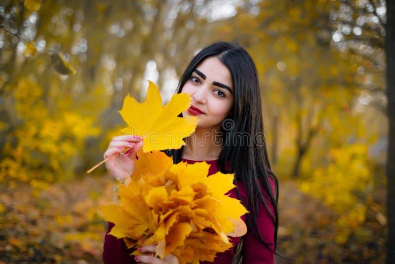 Mulher moreno bonita no sorriso da folha do outono foto de stock royalty free