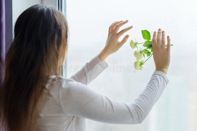Mulher moreno nova com as flores cor-de-rosa brancas, menina perto da janela com pingos de chuva, mãos com as flores na janela fotografia de stock royalty free