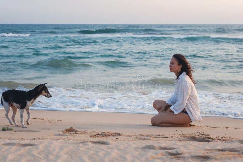 Mulher moreno nova feliz bonita no assento branco na areia com um cão pelo oceano no por do sol fotos de stock