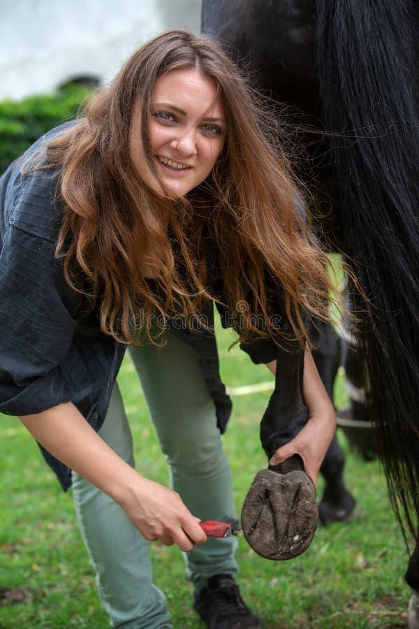 Mulher moreno nova que limpa os cascos de seu cavalo imagem de stock