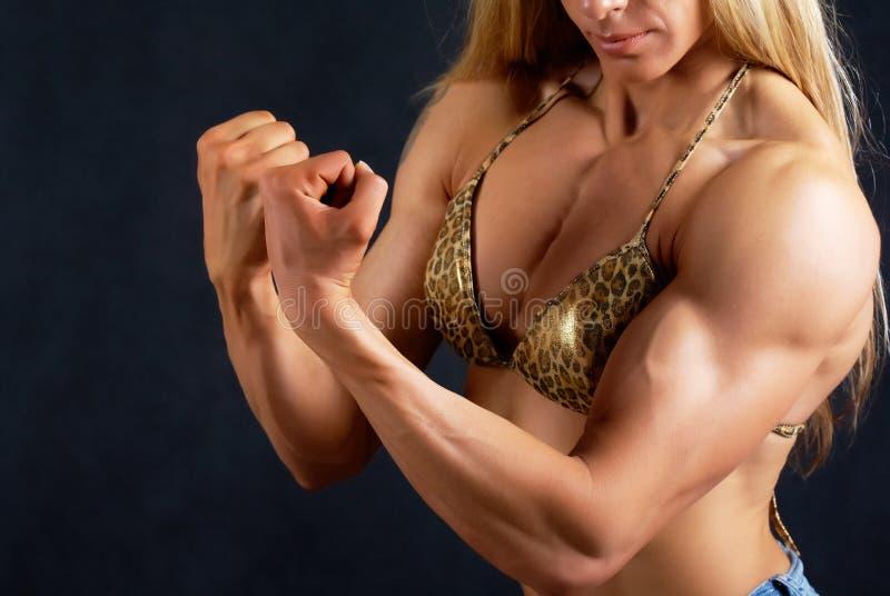 Mulher muscular imagens de stock